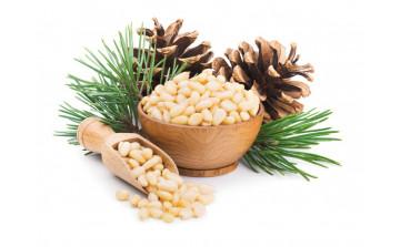 Кедровые орехи для питания